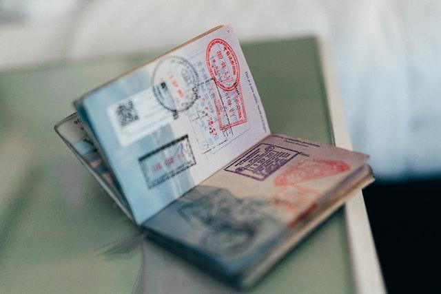 The Benefits of an E1 Visa
